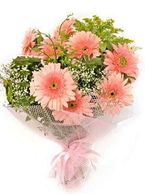 Kastamonu çiçek satışı  11 adet gerbera çiçegi buketi
