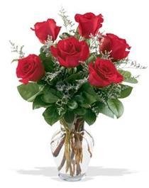 Kastamonu çiçek gönderme sitemiz güvenlidir  7 adet kirmizi gül cam yada mika vazoda sevenlere