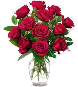 Kastamonu online çiçek gönderme sipariş  1 düzine kirmizi gül sevenlere özel vazo gülleri