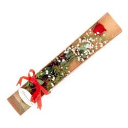 Kastamonu çiçek , çiçekçi , çiçekçilik  Kutuda tek 1 adet kirmizi gül çiçegi