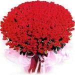 Kastamonu online çiçekçi , çiçek siparişi  1001 adet kirmizi gülden çiçek tanzimi