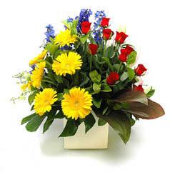 Kastamonu online çiçek gönderme sipariş  9 adet gül ve kir çiçekleri cam yada mika vazoda