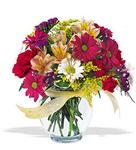 Kastamonu çiçek , çiçekçi , çiçekçilik  cam yada mika vazo içerisinde karisik kir çiçekleri