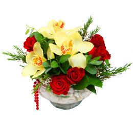 Kastamonu çiçek gönderme  1 adet orkide 5 adet gül cam yada mikada