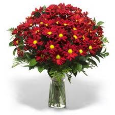 Kastamonu çiçek yolla  Kir çiçekleri cam yada mika vazo içinde