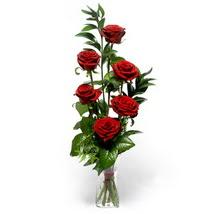 Kastamonu çiçek siparişi sitesi  cam yada mika vazo içerisinde 6 adet kirmizi gül