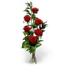 Kastamonu uluslararası çiçek gönderme  mika yada cam vazoda 6 adet essiz gül