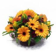 gerbera ve kir çiçek masa aranjmani  Kastamonu çiçek siparişi vermek