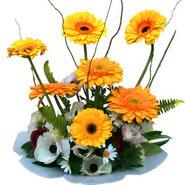 camda gerbera ve mis kokulu kir çiçekleri  Kastamonu çiçekçi telefonları