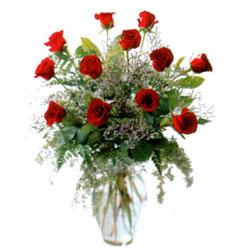 Vazo içerisinde 11 kirmizi gül  Kastamonu çiçek siparişi vermek