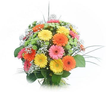 13 adet gerbera çiçegi buketi  Kastamonu online çiçek gönderme sipariş