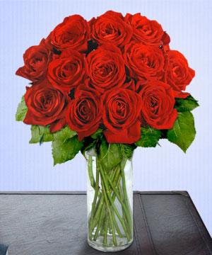 Anneme 12 adet cam içerisinde kirmizi gül  Kastamonu çiçek siparişi sitesi