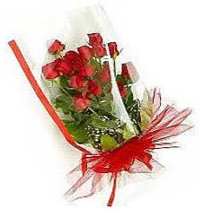 13 adet kirmizi gül buketi sevilenlere  Kastamonu çiçek siparişi vermek