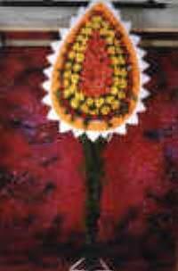 Kastamonu çiçek satışı  dügün açilis çiçekleri  Kastamonu çiçek , çiçekçi , çiçekçilik