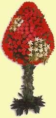 Kastamonu çiçek gönderme  dügün açilis çiçekleri  Kastamonu çiçek online çiçek siparişi