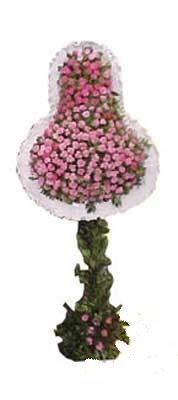Kastamonu ucuz çiçek gönder  dügün açilis çiçekleri  Kastamonu internetten çiçek siparişi