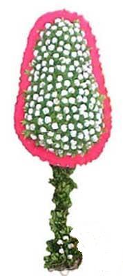 Kastamonu çiçekçi telefonları  dügün açilis çiçekleri  Kastamonu cicek , cicekci
