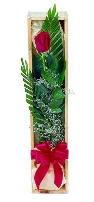 1 adet kutuda kirmizi gül  Kastamonu çiçek gönderme sitemiz güvenlidir