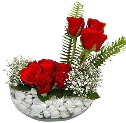 cam içerisinde 9 adet kirmizi gül  Kastamonu çiçek siparişi vermek