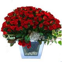 Kastamonu çiçekçiler   101 adet kirmizi gül aranjmani