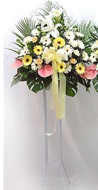 Kastamonu online çiçek gönderme sipariş   perförje çiçegi dügün çiçekleri