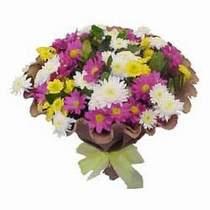 Kastamonu çiçekçi telefonları  Mevsim kir çiçegi demeti