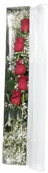 Kastamonu çiçek siparişi sitesi   5 adet gülden kutu güller