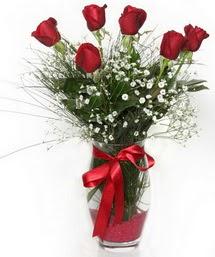7 adet gülden cam içerisinde güller  Kastamonu 14 şubat sevgililer günü çiçek