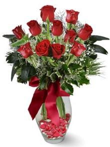 9 adet gül  Kastamonu internetten çiçek satışı  kirmizi gül