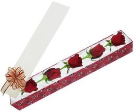 Kastamonu internetten çiçek satışı  kutu içerisinde 5 adet kirmizi gül
