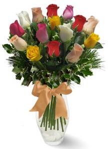 15 adet vazoda renkli gül  Kastamonu internetten çiçek satışı