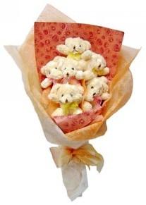 12 adet ayiciktan buket  Kastamonu çiçek siparişi sitesi