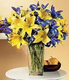 Kastamonu anneler günü çiçek yolla  Lilyum ve mevsim  çiçegi özel