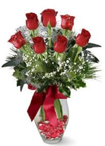 Kastamonu internetten çiçek siparişi  7 adet kirmizi gül cam vazo yada mika vazoda