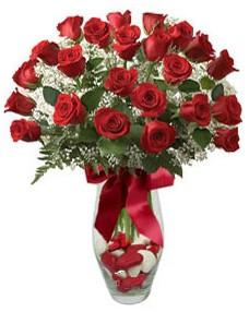 17 adet essiz kalitede kirmizi gül  Kastamonu çiçek mağazası , çiçekçi adresleri