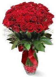 19 adet essiz kalitede kirmizi gül  Kastamonu 14 şubat sevgililer günü çiçek