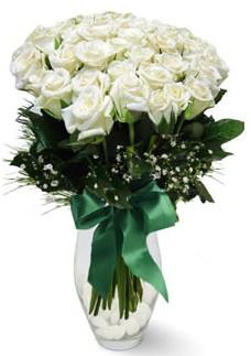 19 adet essiz kalitede beyaz gül  Kastamonu çiçekçiler