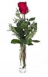Vazo içerisinde 1 adet kirmizi gül  Kastamonu cicekciler , cicek siparisi