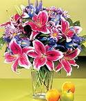 Kastamonu çiçek mağazası , çiçekçi adresleri  Sevgi bahçesi Özel  bir tercih