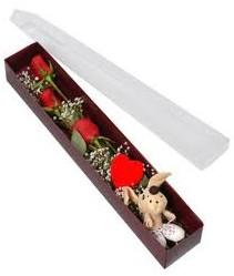 kutu içerisinde 3 adet gül ve oyuncak  Kastamonu cicekciler , cicek siparisi