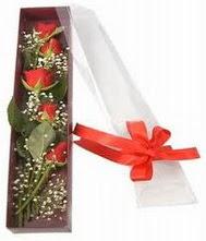 kutu içinde 5 adet kirmizi gül  Kastamonu internetten çiçek siparişi