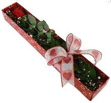 Tek kirmizi gül kutu içerisinde  Kastamonu güvenli kaliteli hızlı çiçek
