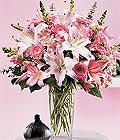 Kastamonu çiçek yolla , çiçek gönder , çiçekçi   Kazablanka biçme vazoda
