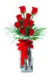 Kastamonu çiçekçi telefonları  9 adet mika yada cam vazoda gül tanzimi