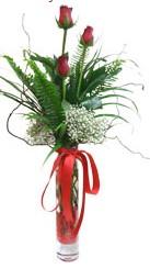 Kastamonu çiçek siparişi sitesi  3 adet kirmizi gül vazo içerisinde