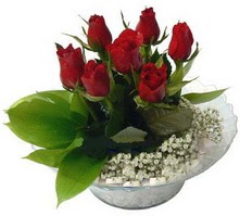 Kastamonu internetten çiçek satışı  cam yada mika içerisinde 5 adet kirmizi gül
