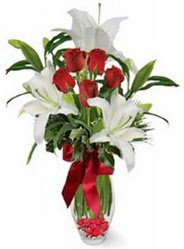 Kastamonu çiçek siparişi vermek  5 adet kirmizi gül ve 3 kandil kazablanka