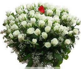 Kastamonu internetten çiçek satışı  100 adet beyaz 1 adet kirmizi gül buketi
