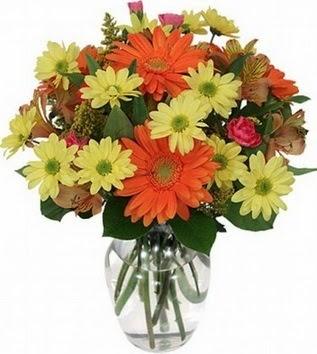 Kastamonu hediye sevgilime hediye çiçek  vazo içerisinde karışık mevsim çiçekleri