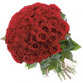 Kastamonu güvenli kaliteli hızlı çiçek  101 adet kırmızı gül buketi modeli
